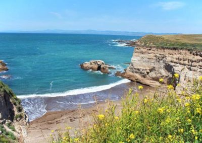 Montana-de-Oro-Los-Osos-Central-Coast-California